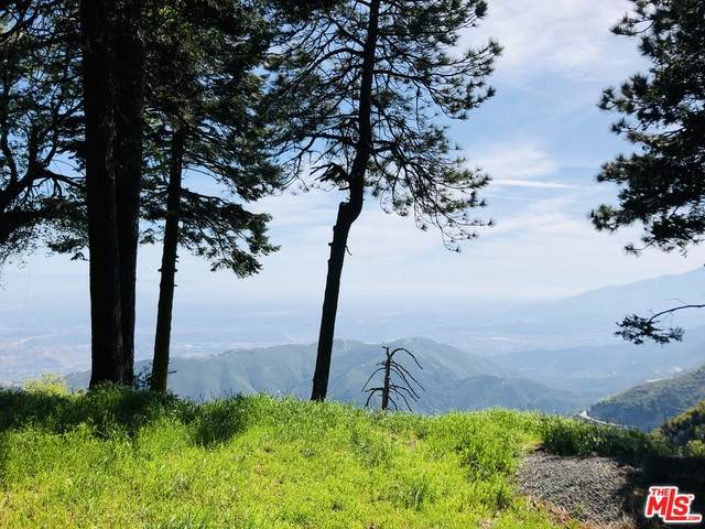 0 Great View Dr, Crestline, CA 92325 (#20-596718) :: Lydia Gable Realty Group