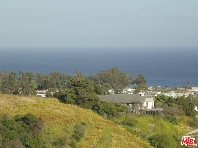 6140 Galahad Rd, Malibu, CA 90265 (#20-599174) :: Randy Plaice and Associates