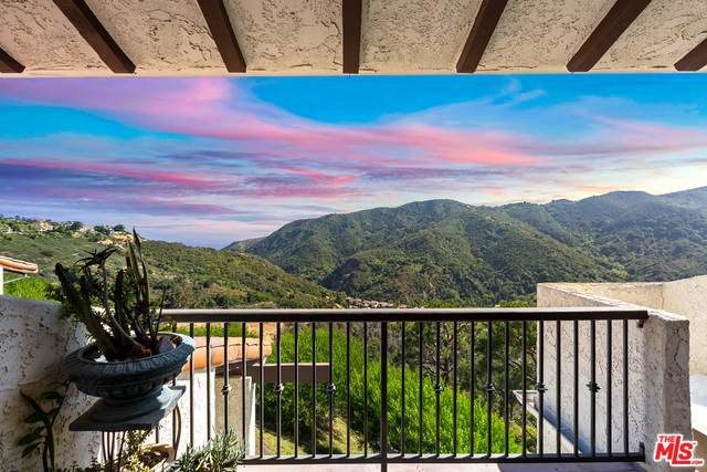1916 Palisades Dr, Pacific Palisades, CA 90272 (#20-599688) :: The Pratt Group