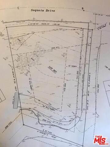 1393 Sequoia Dr, Lake Arrowhead, CA 92352 (#20-609142) :: Compass