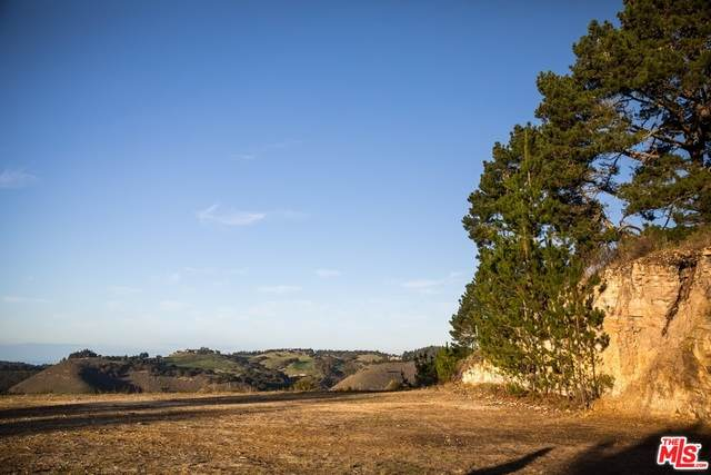 34 Tehama Lot 29, Carmel-by-the-Sea, CA 93923 (MLS #20-618288) :: Zwemmer Realty Group