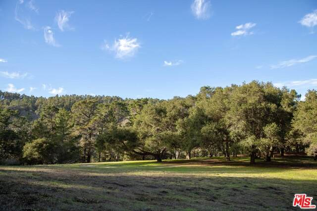 20 Tehama Lot 38, Carmel-by-the-Sea, CA 93923 (MLS #20-618348) :: Zwemmer Realty Group