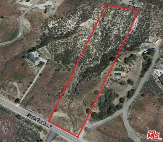 9815 Elizabeth Lake Rd, Leona Valley, CA 93551 (#20-620666) :: The Grillo Group