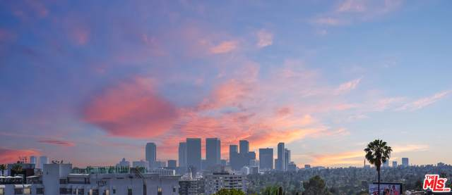 8787 Shoreham Dr #309, West Hollywood, CA 90069 (#20-633250) :: Lydia Gable Realty Group