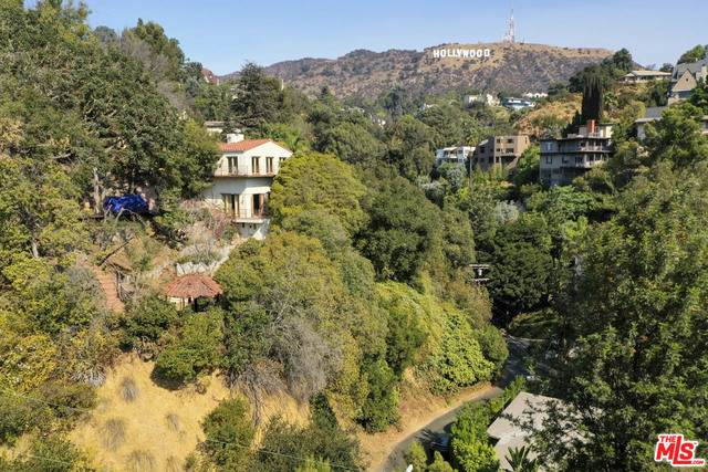 3015 Belden Dr, Los Angeles, CA 90065 (#20-640930) :: The Suarez Team