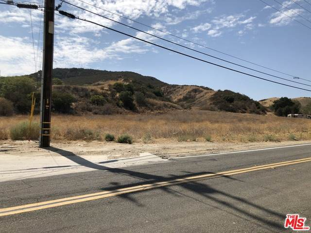 0 Hasley Canyon Rd, Castaic, CA 91384 (#20-647886) :: Randy Plaice and Associates