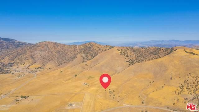 0 Mountain Springs Ln, Tehachapi, CA 93561 (#20-650338) :: Lydia Gable Realty Group