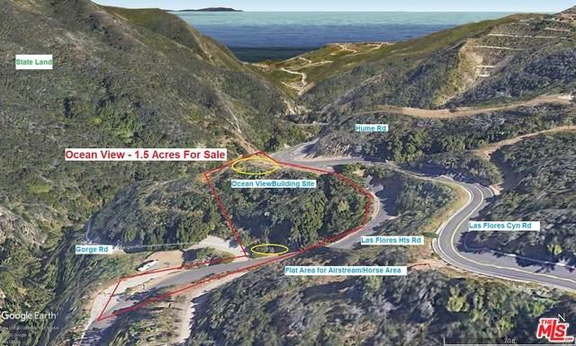 3000 Las Flores Cyn Rd, Malibu, CA 90265 (#20-662390) :: Berkshire Hathaway HomeServices California Properties