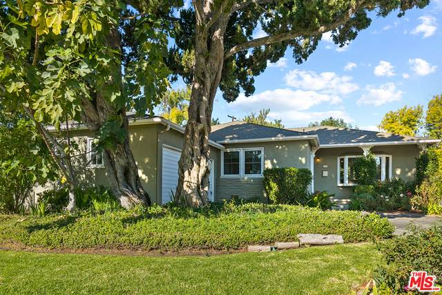 6501 Randi Ave, Woodland Hills, CA 91303 (#20-665624) :: Randy Plaice and Associates