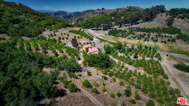 43447 Calle Jardin, Temecula, CA 92590 (#20-673810) :: The Grillo Group