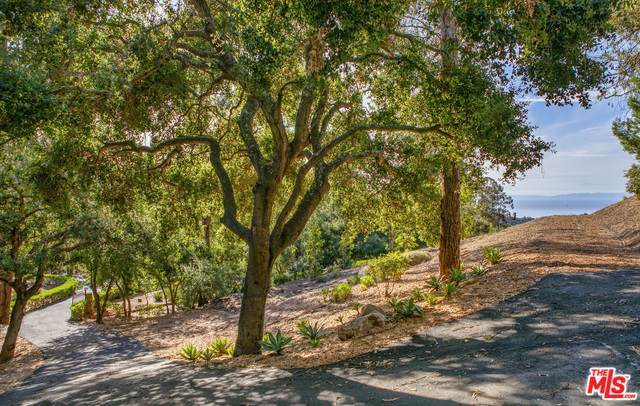 805 Toro Canyon Road, Montecito, CA 93108 (#21-675598) :: The Pratt Group