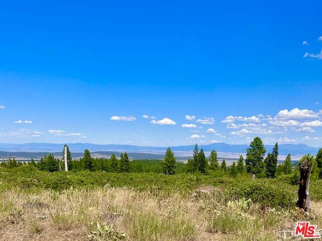 0 Sable Dr, Alturas, CA 96101 (#21-683598) :: TruLine Realty