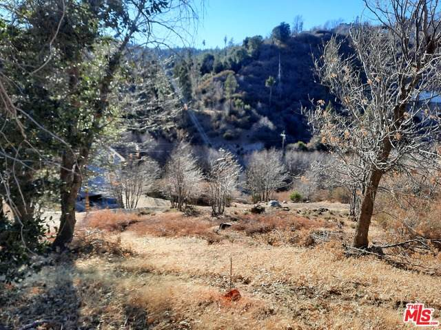 Cedar Glen Mountain Lot St - Photo 1