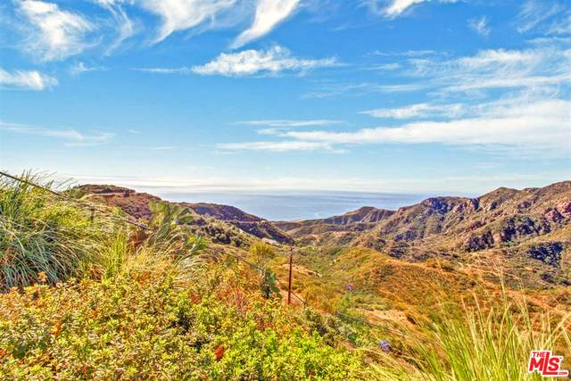 23318 W Paloma Blanca Dr, Malibu, CA 90265 (#21-684662) :: The Pratt Group