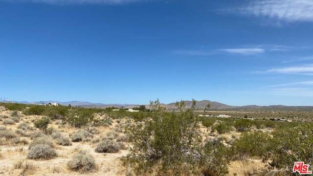 0 Twentynine Palms Hwy, Joshua Tree, CA 92252 (#21-685220) :: Berkshire Hathaway HomeServices California Properties