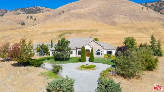 22100 Mountain Springs Ln, Tehachapi, CA 93561 (#21-688244) :: The Suarez Team