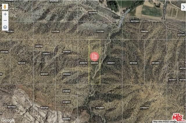 157 Valyermo Rd, Llano, CA 93544 (#21-697302) :: The Bobnes Group Real Estate