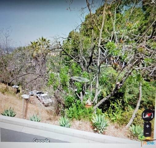 1865 Hanscom Dr, South Pasadena, CA 91030 (#21-721016) :: Randy Plaice and Associates