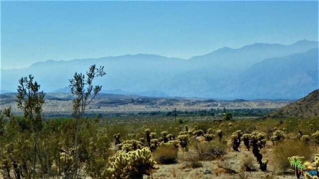 8 Terry Dr, Desert Hot Springs, CA 92241 (#21-736454) :: Randy Plaice and Associates