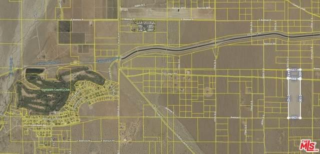 0 183 St. E And Forth Tejon Rd., Llano, CA 93544 (#21-740380) :: Randy Plaice and Associates