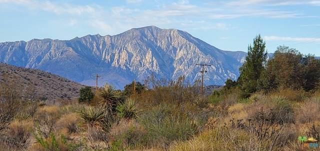 10785 San Jacinto St - Photo 1