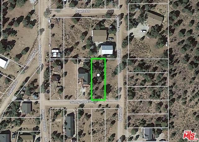 46360 Sunny Slope Ln, Big Bear, CA 92314 (MLS #21-750682) :: Hacienda Agency Inc