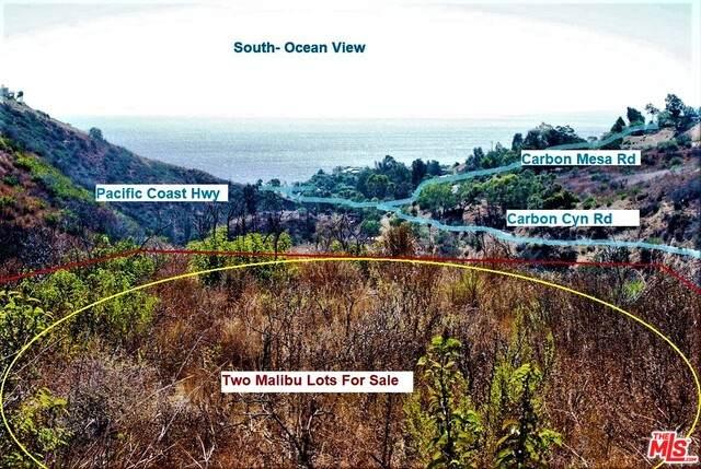 3702 Carbon Cyn, Malibu, CA 90265 (#21-751376) :: The Grillo Group