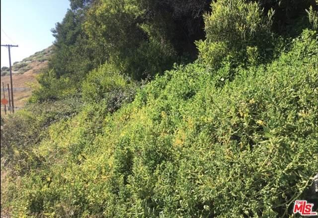 0 Pacific Coast Hwy, Pacific Palisades, CA 90272 (#21-751534) :: TruLine Realty