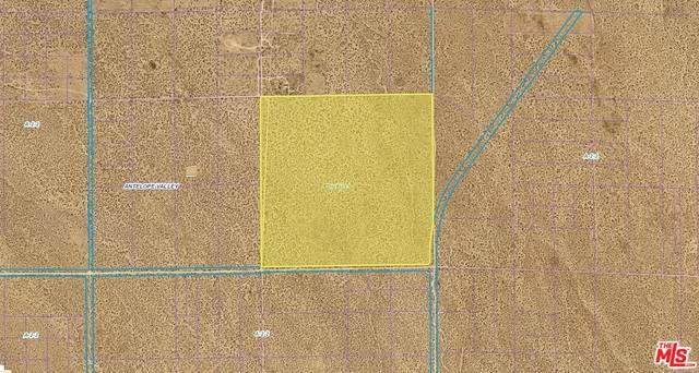 20000 E Avenue S-8, Llano, CA 93591 (#21-752500) :: Randy Plaice and Associates