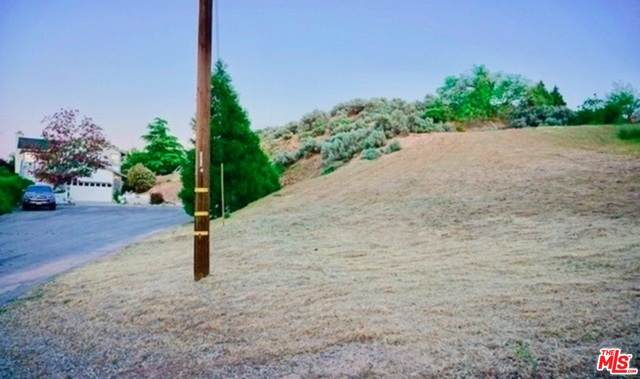 0 Ranch Club Dr, ELIZABETH LAKE, CA 93532 (MLS #21-753422) :: Zwemmer Realty Group