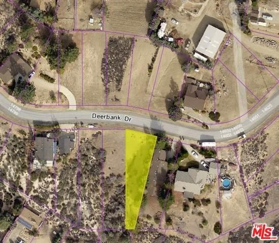 0 Deerbank Drive Dr, ELIZABETH LAKE, CA 93532 (MLS #21-754074) :: Zwemmer Realty Group