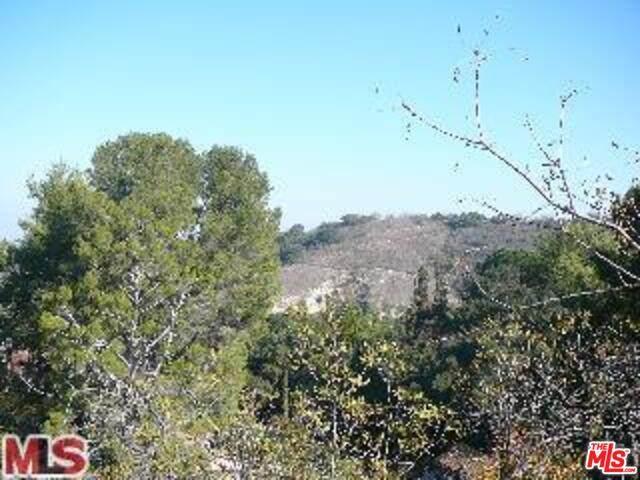 3971 Hopevale, Sherman Oaks, CA 91403 (#21-756720) :: Randy Plaice and Associates