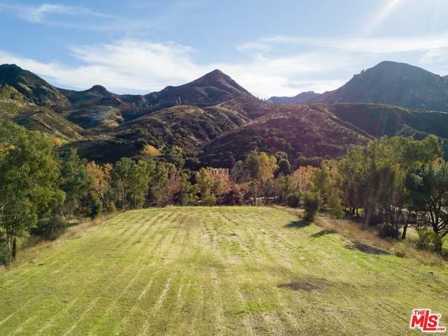 31415 Lobo Canyon Rd - Photo 1