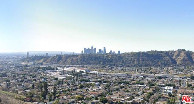 3651 River View St, Los Angeles, CA 90065 (#21-762028) :: Lydia Gable Realty Group