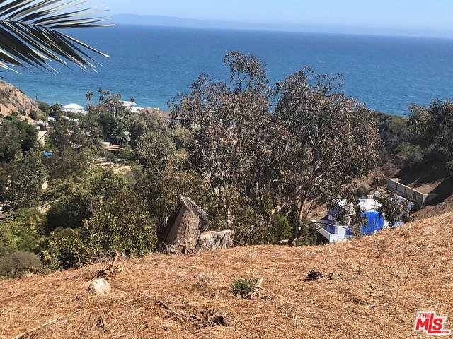 0 Rambla Orenta, Malibu, CA 90265 (#21-767996) :: Montemayor & Associates