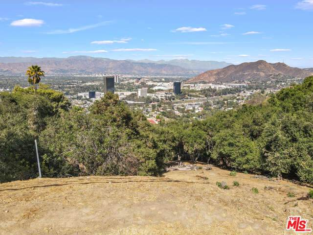7845 Mulholland Dr, Studio City, CA 91604 (#21-770898) :: The Bobnes Group Real Estate
