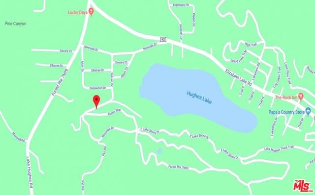 0 Lakeshore Rd, Lake Hughes, CA 93532 (MLS #21-771488) :: Zwemmer Realty Group