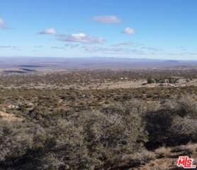 Vac/Vic 113 Ste/Camel Ba Rd, Juniper Hills, CA 93543 (#21-786068) :: Lydia Gable Realty Group