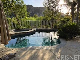 25502 Wilde Avenue, Stevenson Ranch, CA 91381 (#SR19009488) :: Paris and Connor MacIvor