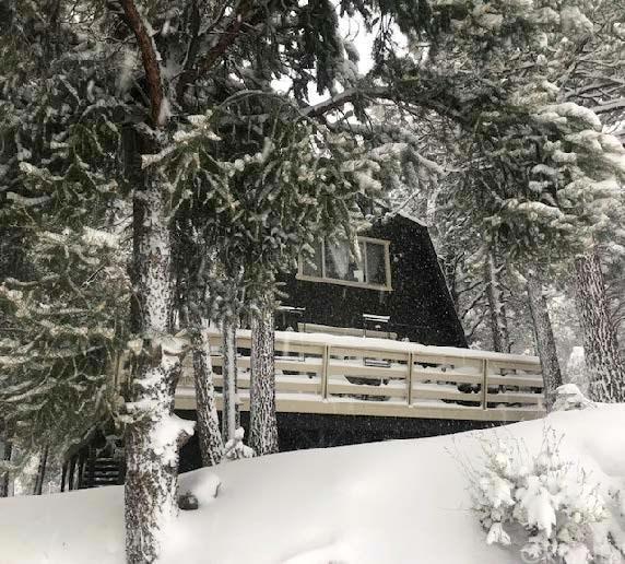1410 Dogwood Way, Pine Mountain Club, CA 93222 (#SR19014821) :: The Fineman Suarez Team