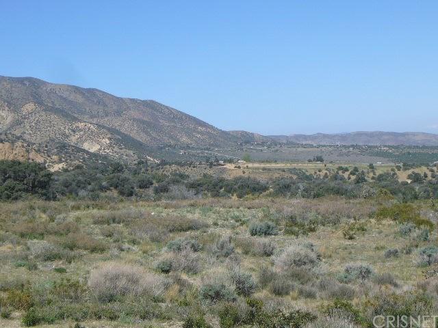 0 Vac/Pine Rock Rd/Vic Big Sky Drive, Juniper Hills, CA 93543 (#SR19151322) :: The Pratt Group