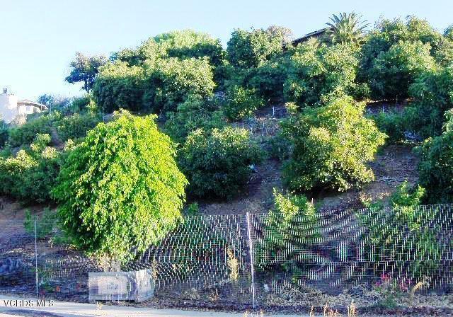 233 View Drive, Santa Paula, CA 93060 (#219009175) :: Paris and Connor MacIvor