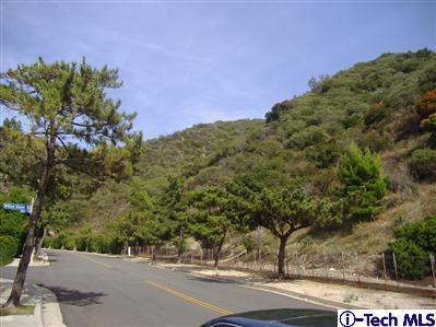 0 Pine Glen Road, La Crescenta, CA 91214 (#319003138) :: The Pratt Group