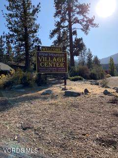 2005 Freeman Drive, Pine Mountain Club, CA 93222 (#219012448) :: Lydia Gable Realty Group