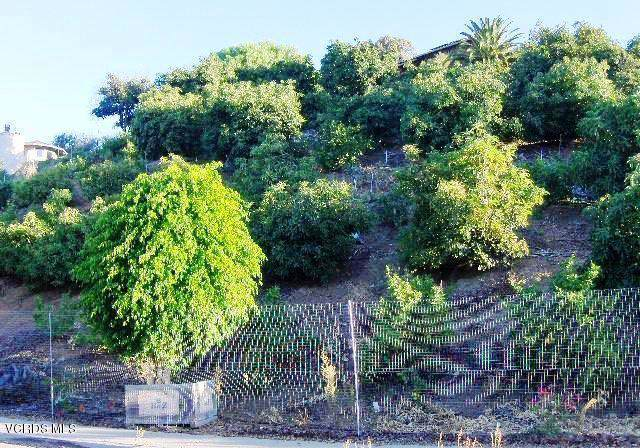233 View Drive, Santa Paula, CA 93060 (#220001133) :: Randy Plaice and Associates