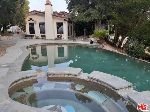 24114 Wildwood Canyon Rd, Newhall, CA 91321 (#20-604272) :: Randy Plaice and Associates
