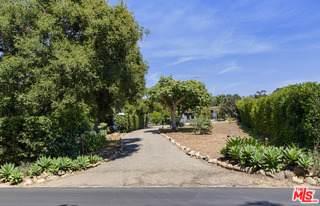 696 Romero Canyon Rd, Montecito, CA 93108 (#20-610852) :: Randy Plaice and Associates