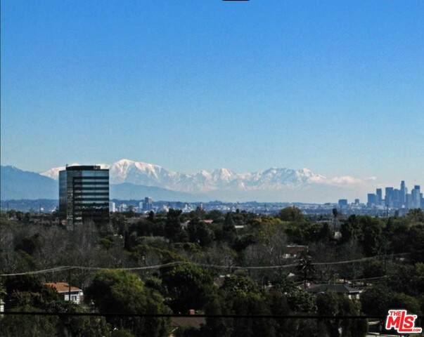 3296 Inglewood Blvd, Los Angeles, CA 90066 (#20-614748) :: Compass