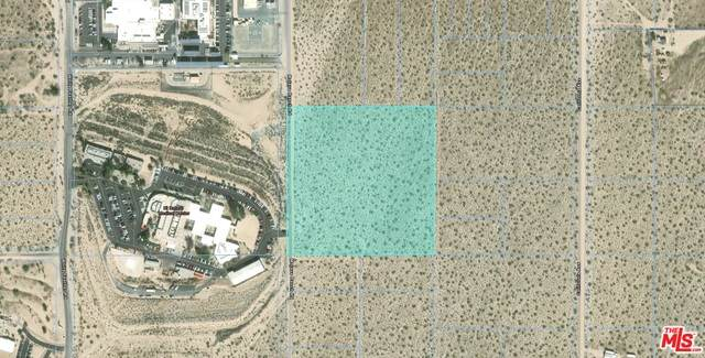 0 Mojave Ranch Rd, Joshua Tree, CA 92252 (#20-649790) :: The Pratt Group