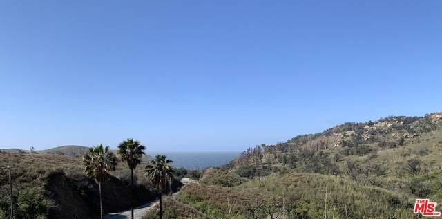 3300 Encinal Cyn, Malibu, CA 90265 (MLS #21-729750) :: The Sandi Phillips Team
